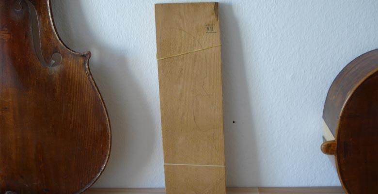 domholz-fichte-muenchen