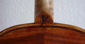 geige-aus-domholz