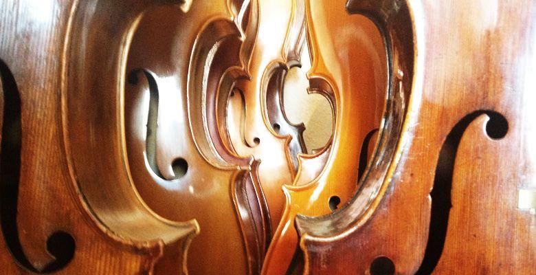 Eva Lämmle Geigenbau - Instrumente für Erwachsene
