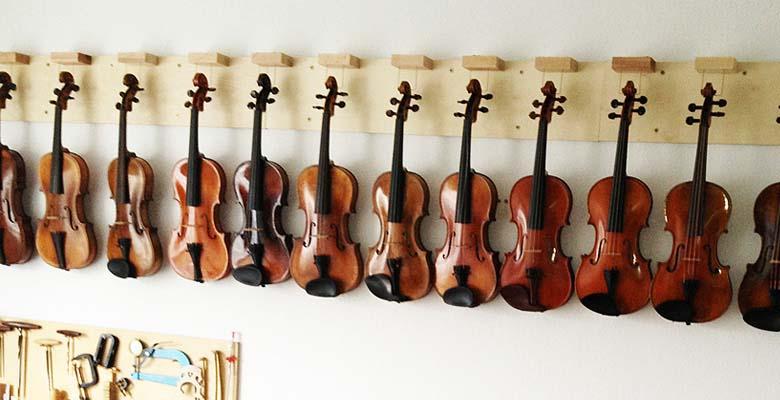 große Auswahl an Geigen
