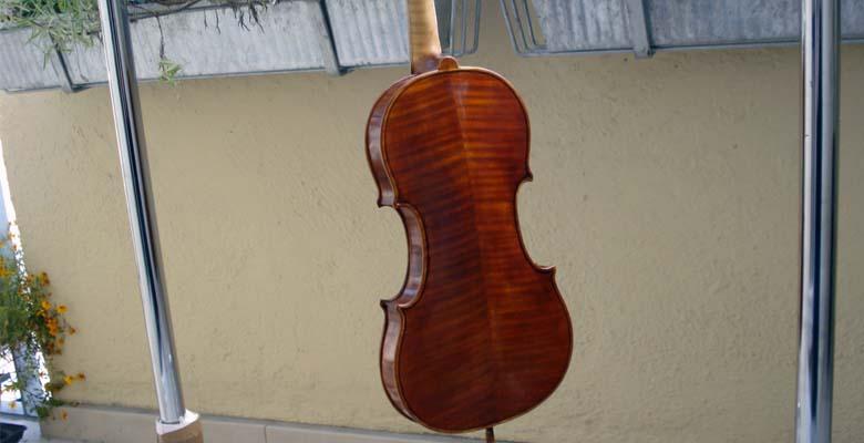 Domholz-Geige-Rückenansicht